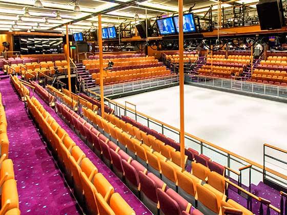 真冰溜冰场